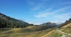 Montagne du Charbon - La Combe le sentier